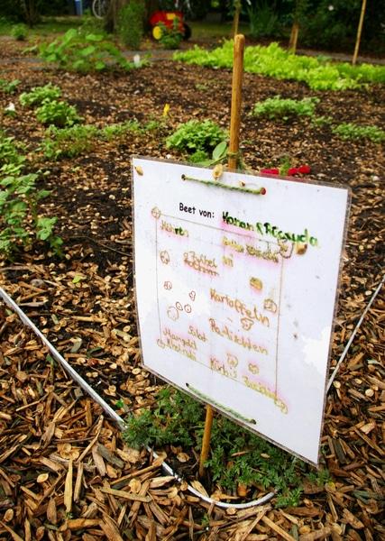 Gartenpiraten: So finden wir Pflanzen wieder